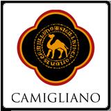 Azienda vinicola Camigliano,vendita online di vino