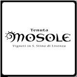 Azienda vinicola Mosole,vendita online di vino