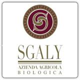 Vendita bag in box e bottiglie vino biologico Sgaly