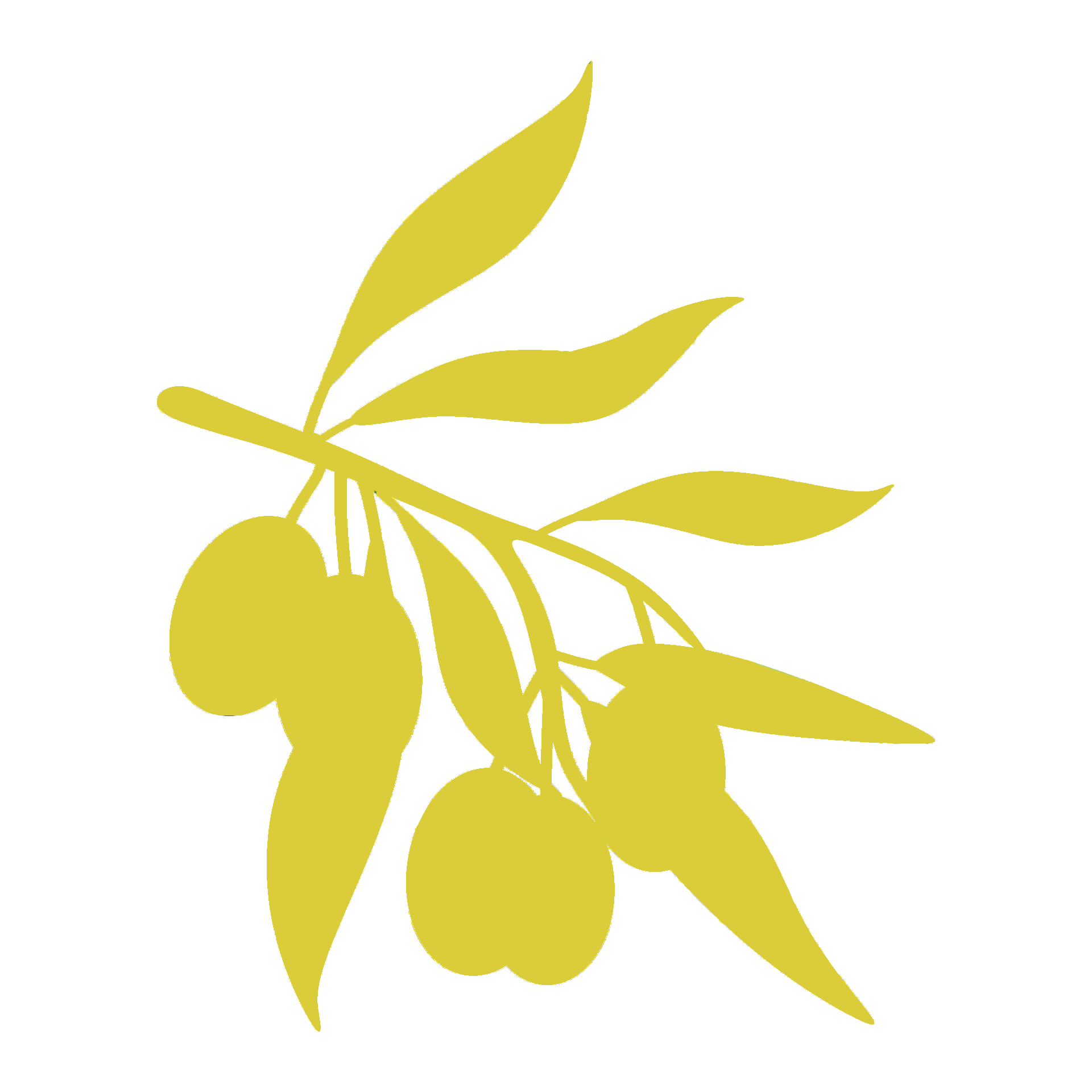 ulivo